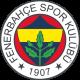autocollant Sticker Fenerbahçe 2647