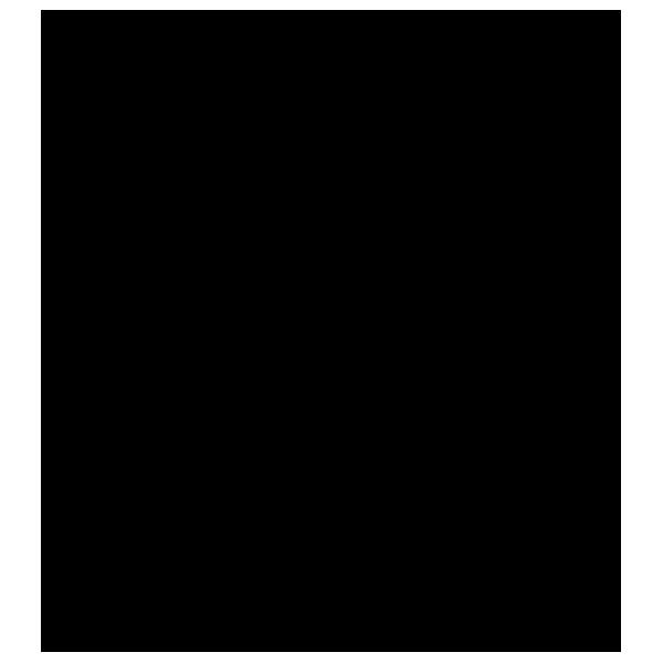 Tête de Lion - STICKAD